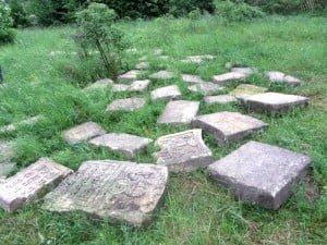 Volunteer cemetery clean up @ Rohatyn Old Jewish Cemetery | Rohatyn | Ivano-Frankivsk Oblast | Ukraine