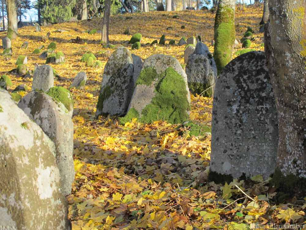 In the Svencionys Jewish cemetery, Lithuania