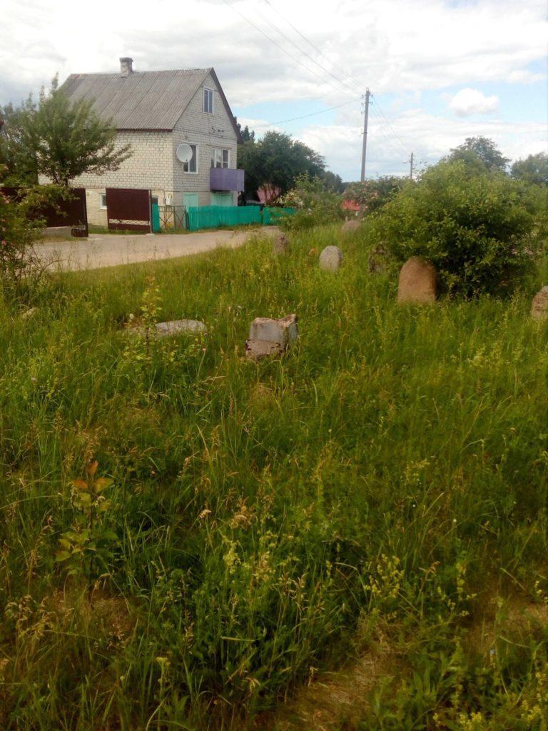 Abanonded Jewish cemetery in Ivenets, Belarus. Photo: ESJF