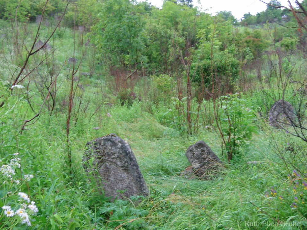 Hillside Jewish cemetery in Kremenets, Ukraine (2006)