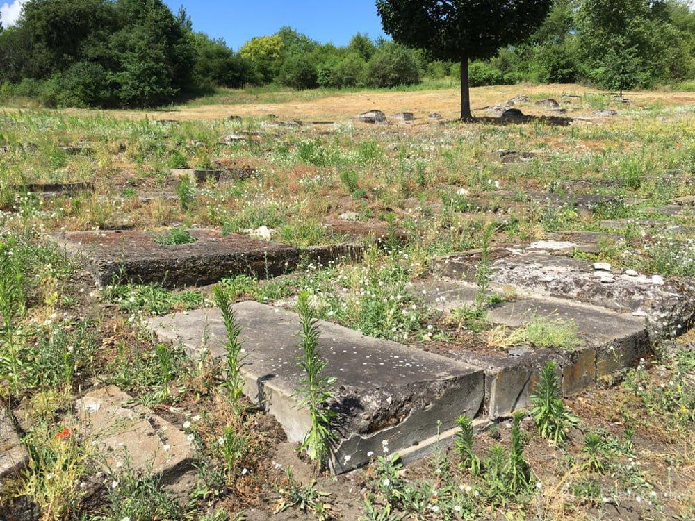 Clean-up @ Plaszow concentration camp site | Kraków | małopolskie | Poland