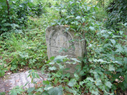 Jewish cemetery clean-up @ Jewish cemetery Szczebrzeszyn, Poland | Szczebrzeszyn | lubelskie | Poland
