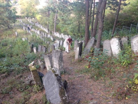 Restoring Polish Jewish Cemeteries – Linking Preservation to Genealogy @ Online Zoom panel discussion