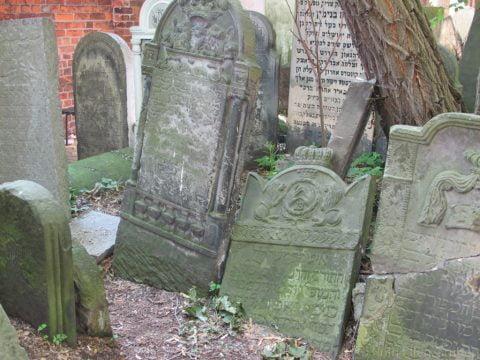 Warsaw Jewish cemetery cleanup @ Warsaw Jewish Cemetery | Warszawa | Mazowieckie | Poland
