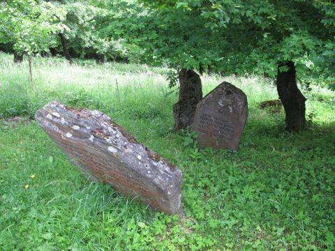 Rymanów Jewish cemetery cleanup @ Jewish cemetery Rymanów   Rymanów   Podkarpackie   Poland