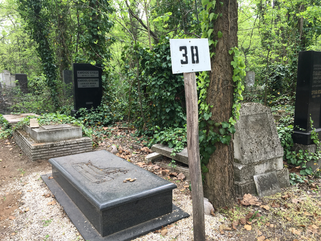 Grave of the architect Andras Roman, Kozma utca cemetery