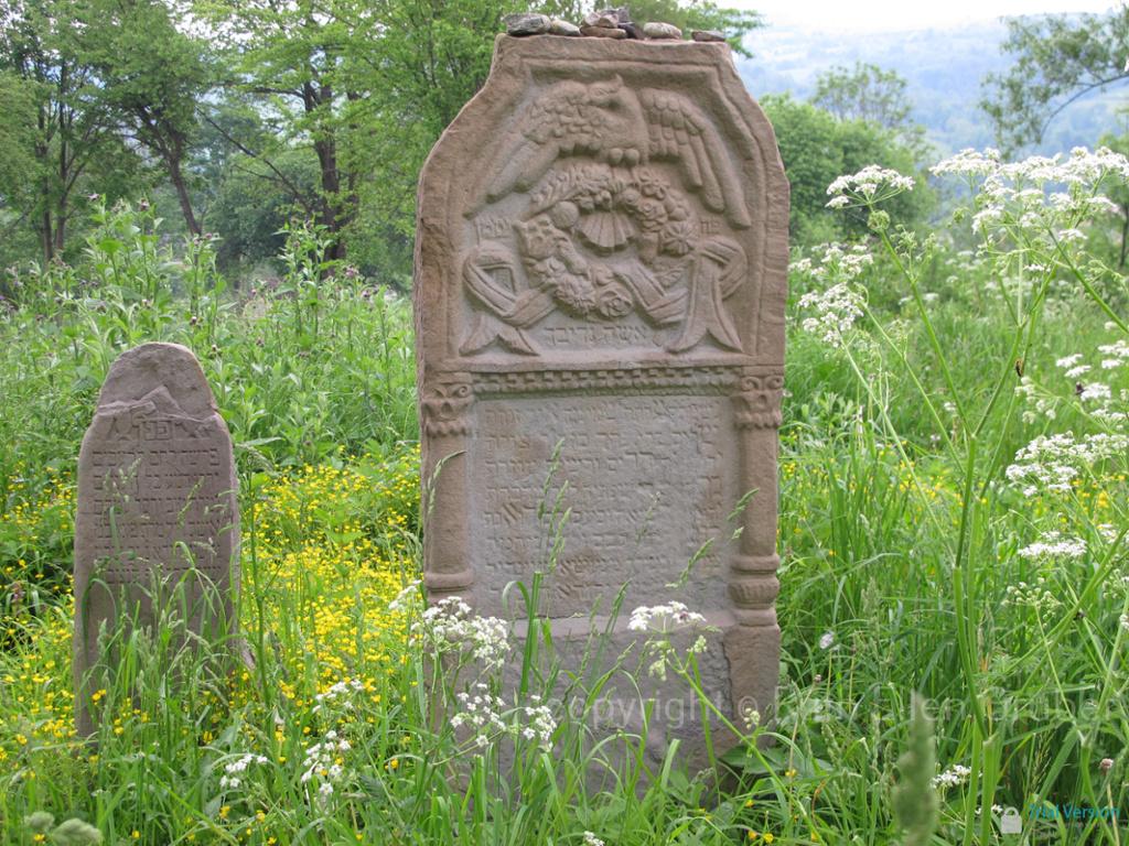 Matzevah in Baligrod Jewish cemetery. Photo © Ruth Ellen Gruber